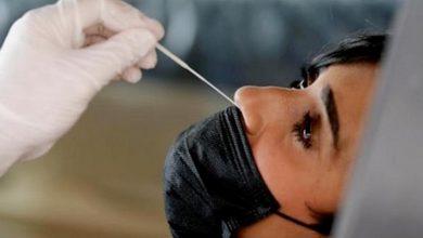 «الصحة»: 42 إصابة جديدة بفيروس كورونا وحالة وفاة